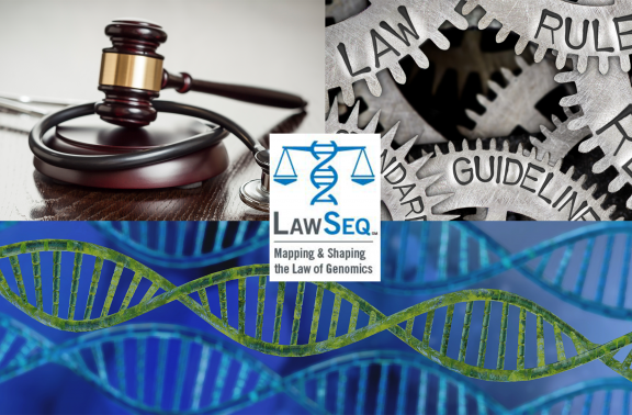 infographic and logo for LawSeqSM